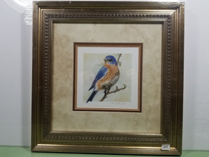 Bird - Bluebird Morning - Eastern Bluebird (Passeriformes sialia) - Watercolor