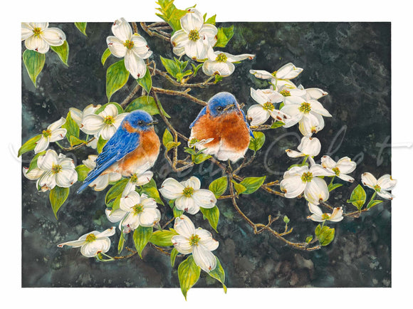 Bluebirds on Dogwood Blossoms