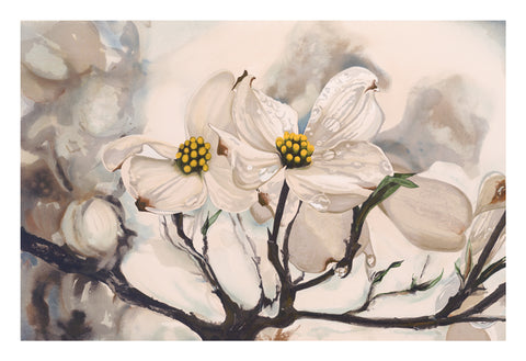 Dogwood - Giclee Prints & Original Stone Lithograph