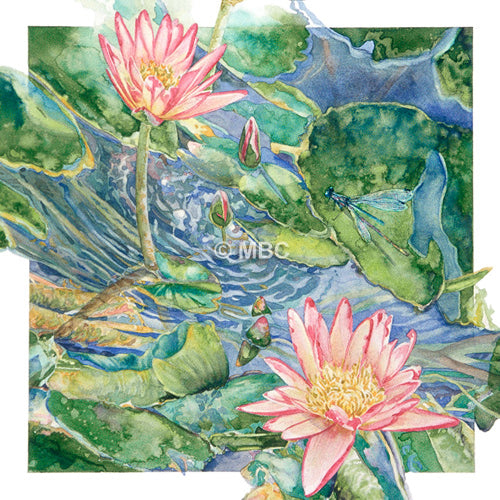 'Waterlilies and Dragonfly' - Watercolor