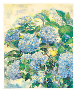 Hydrangeas and Warbler