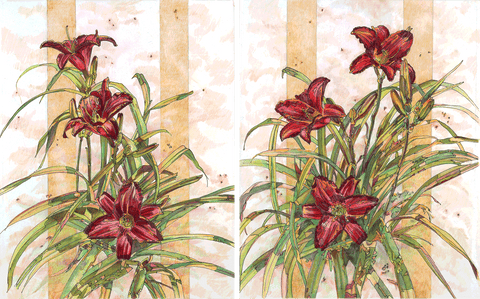 Lily - Red Daylilies I and II - Colored Pencil & Ink