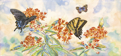 Butterfly - Swallowtail Butterflies on ButterflyWeed - Watercolor
