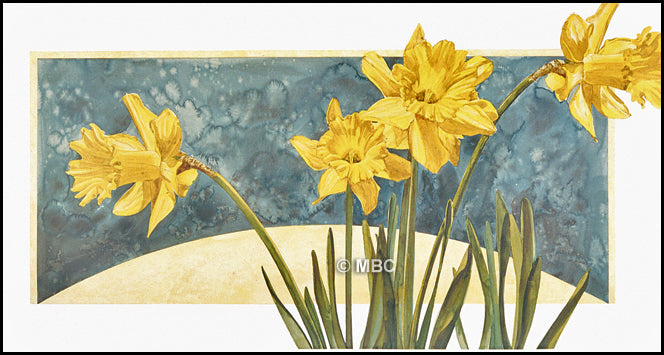 Daffodils - Spring is Here Again - Watercolor