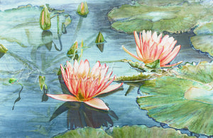 "Waterlilies ""Reflections"" - Watercolor"