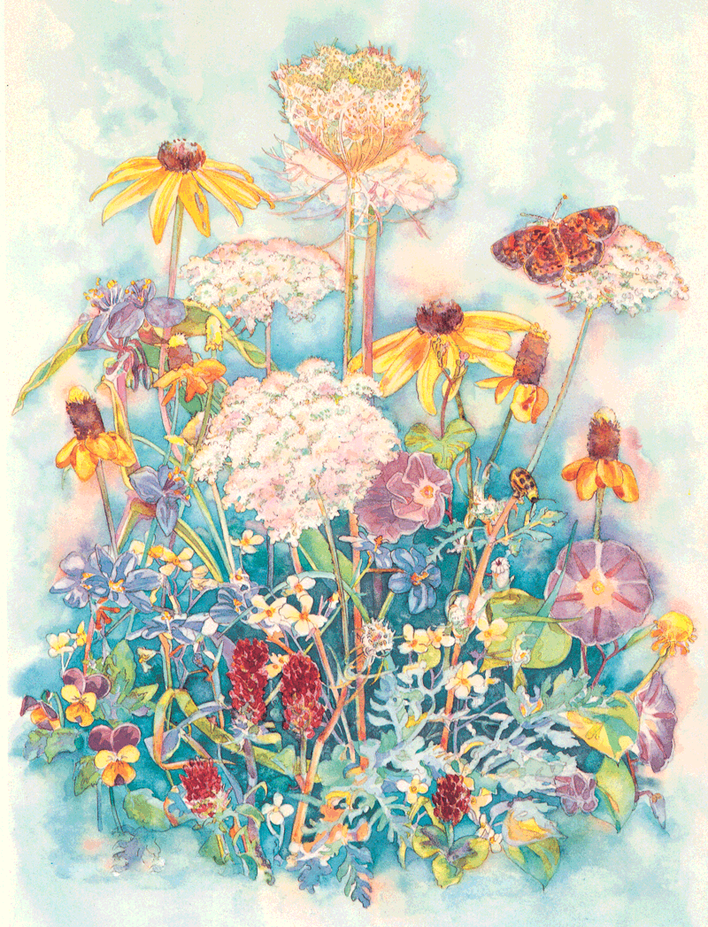 Wildflowers I - Sunny Wildflowers - Watercolor