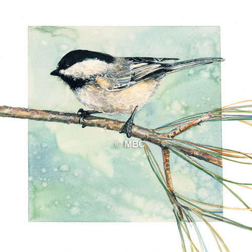 Bird - Woodland Chickadee - Watercolor