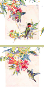 Bird - Ruby-throated Hummingbirds (The Pair) - Watercolor
