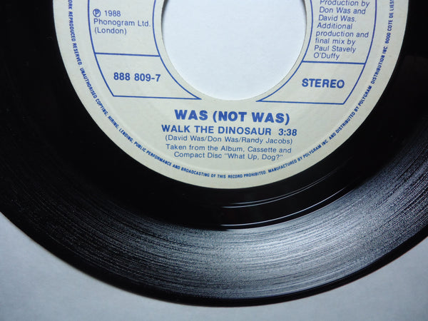 Was (Not Was)  - Walk The Dinosaur [Picture Sleeve]