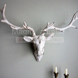 Impressive Large Ivory Cream Stag Head Wall Art - magnoliavintage