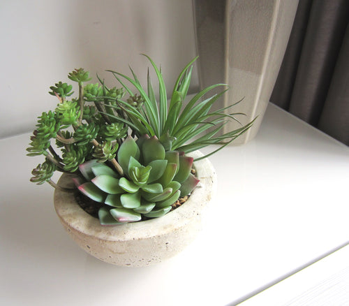 Potted Succulents in Stone Style Pot - magnoliavintage