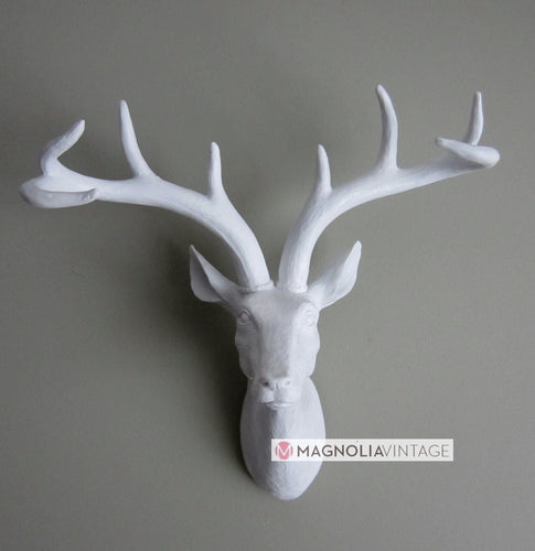 White Stag Head Wall Art - magnoliavintage