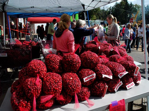Cranberry Festival in Stone Lake, WI - Annual Cranberry Harvest Fest