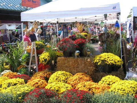 Hayward Fall Festival arts, crafts, pumpkins, mums & more