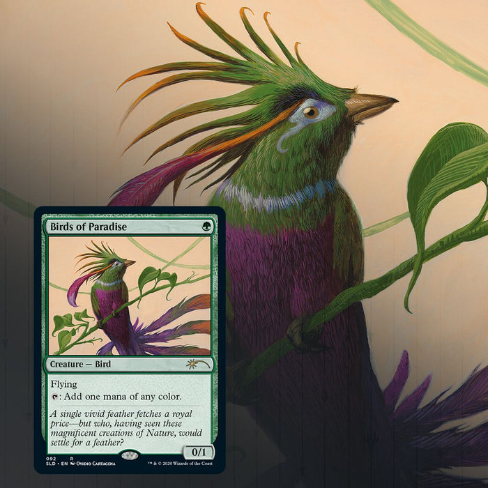 Magic: The Gathering TCG - Secret Lair Drop Series - Ornithological Studies [Card Game, 2 Players]