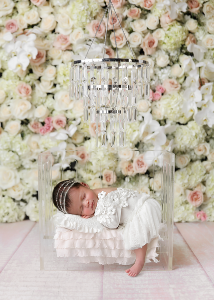 NEW |  The Glass Slipper Crib