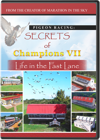 THE MAKING OF SECRETS OF CHAMPIONS VII