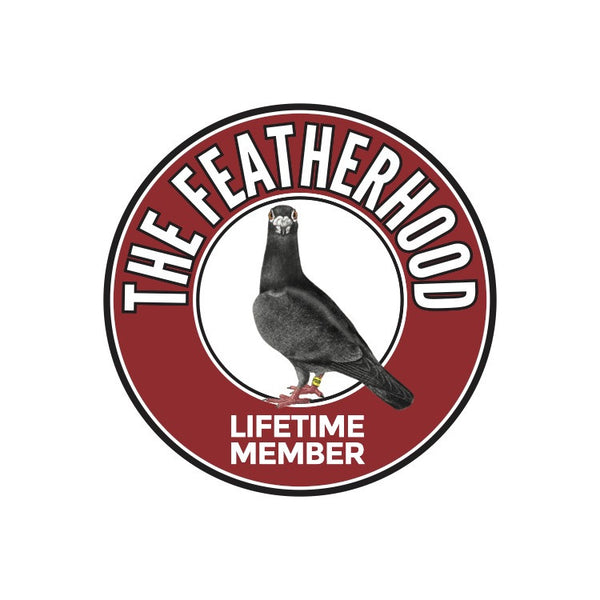 FEATHERHOOD ADULT T-SHIRT - Sport Grey - racing pigeon care keeping films