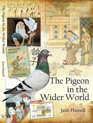 The Pigeon in the Wider World - racing pigeon care keeping films