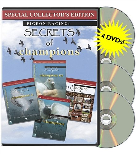 Secrets of Champions Original Set 1-4    [4 DVDs] - racing pigeon care keeping films