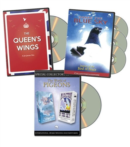 PIGEON DOCUMENTARY FILMS  The Queen's Wings, Share the Blue Sky, The World of Pigeons - PACCOM FILMS