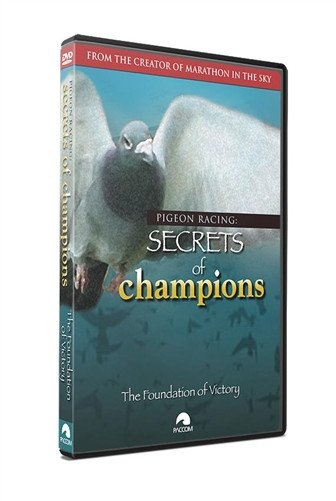 "Pigeon Racing Secrets Of Champions: ""The Foundation of Victory"" - PACCOM FILMS"