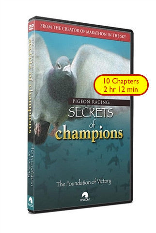 "Secrets Of Champions: ""The Foundation of Victory"" - racing pigeon care keeping films"