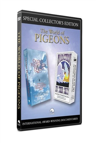 The World of Pigeons - racing pigeon care keeping films