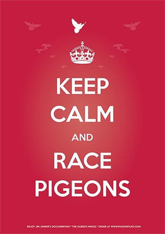 """Keep Calm and Race Pigeons"" Poster (available in USA only) - racing pigeon care keeping films"