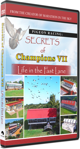 "*NEWEST FILM!!   Secrets of Champions VII: ""Life in the Fast Lane"" - racing pigeon care keeping films"