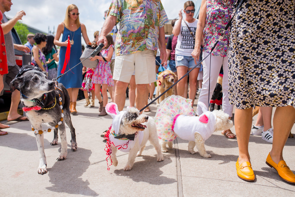 2018 Pet Parade Costume Contest Registration