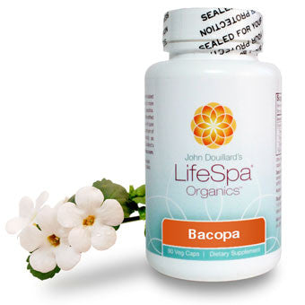 Bacopa: Improve Memory, Mood And Focus