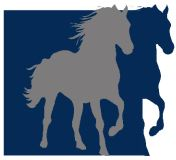 Cheval Colorado LLC