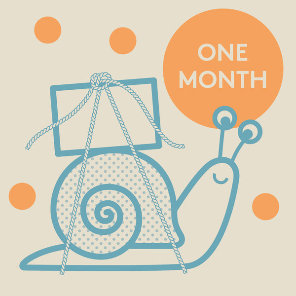 Knock Knock Box Gift: 1 Month