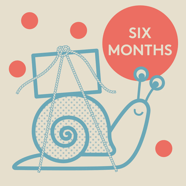 Knock Knock Box Monthly Gift Subscription: 6 Months