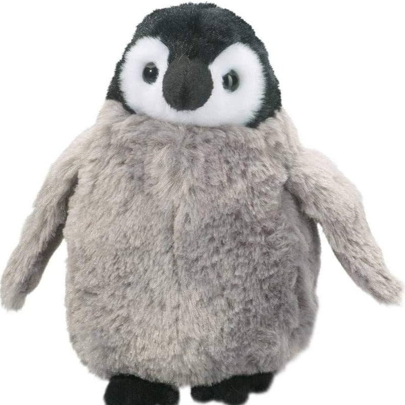 Sweet Penguin Chick