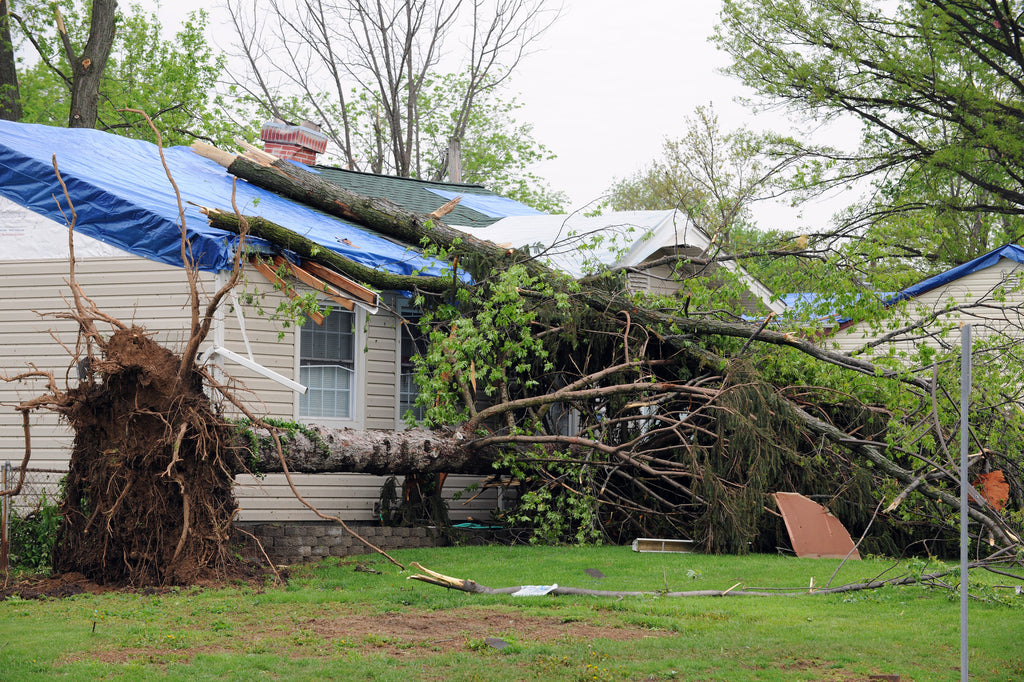 Keep Your Home and Family Safe During Storm Season