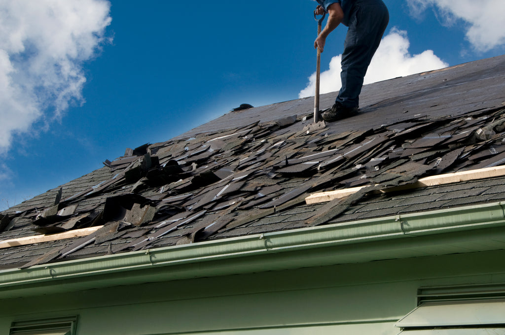 Planning for a new roof this Spring? Consider these 5 upgrades!