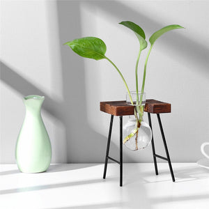 Hydroponic Test Tube Vase with Wooden Frame