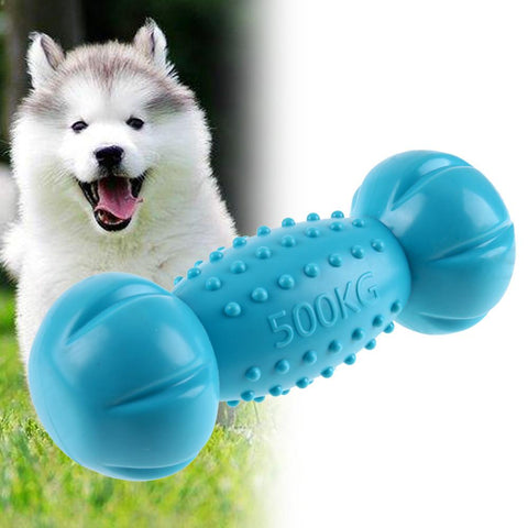 Dumbbell Squeak Chewing Toy - DogCore.com