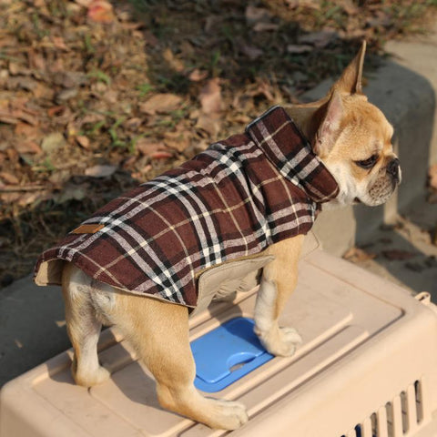 DC Reversable Dog Jacket - DogCore.com