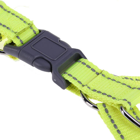 XL Quick Fit Reflective  Collars - DogCore.com