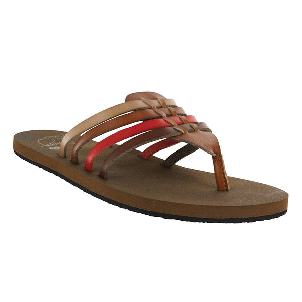 Cobian Women's Aloha Sandals - Multi / 6