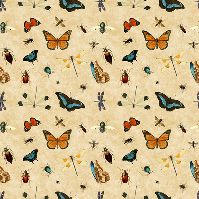 Butterflies and Bugs - ON SALE!