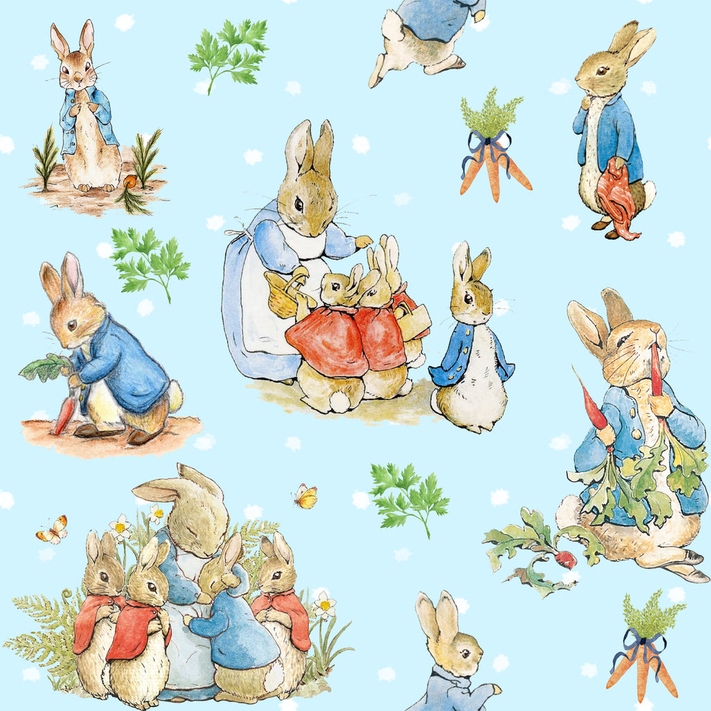 Peter Rabbit Inspired  - SOC Unlimited