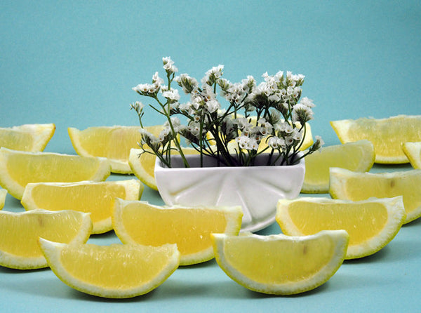Lemon Wedge Container