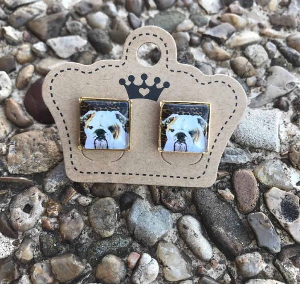 Leopard Bulldog Squares - Juicy Gemz