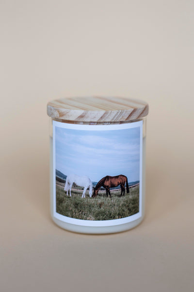 The Horses Candle