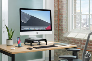 Twelve South Curve Riser for iMacs and Displays