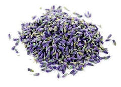 organic lavender flower benefits herbal
